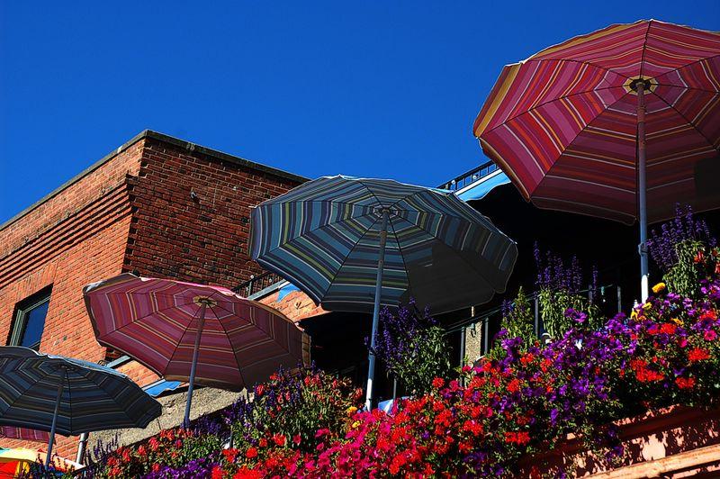 Umbrellas at the market