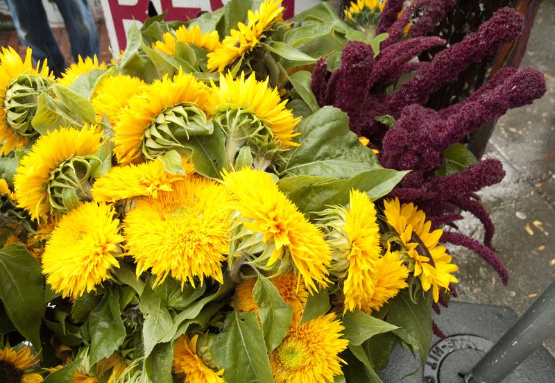 Yellow and gold market flowers