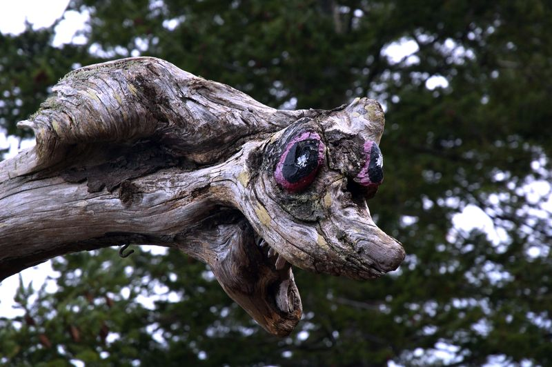 Driftwood monster