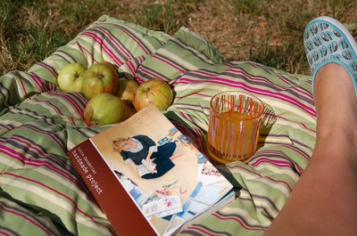 Picnic_with_lotta