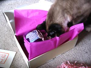 Madison_opening_present